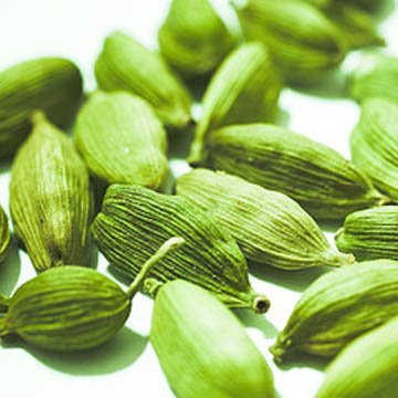 356884Sell Our Own Indian Green Cardamom%281%29 Cardamonul, aroma pretioasa a Indiei