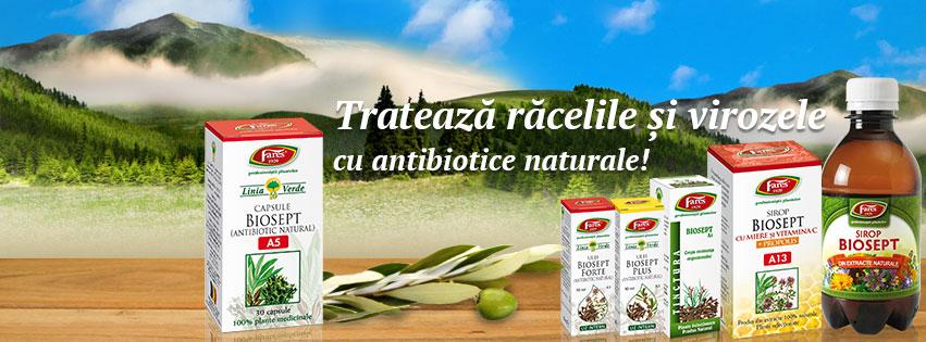 Biosept Sirop Cu Miere, Vitamina C Si Propolis 100ml FARES 2