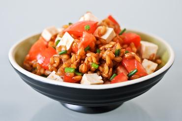 salata%20spelta Graul spelta – cereala magica