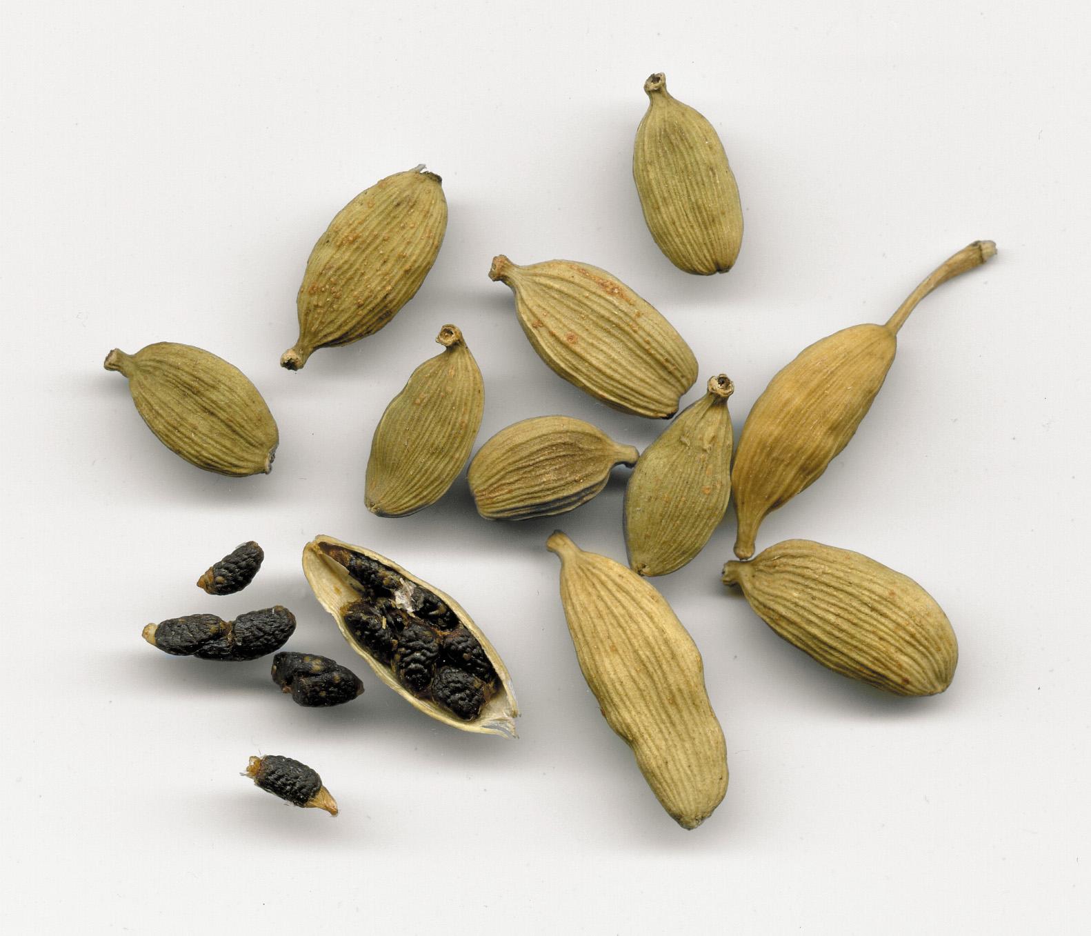 Cardamom, aroma pretioasa a Indiei
