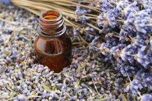 Oil of Lavender essential,