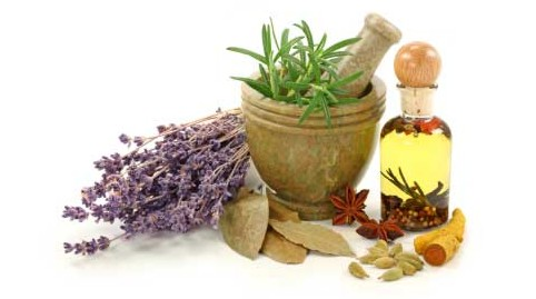 Remedii naturale impotriva tantarilor