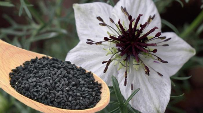 chimen negru ceai