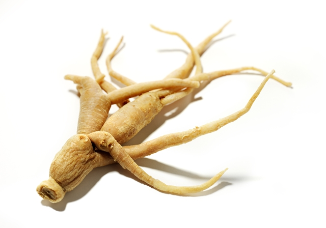 ginseng root isolated