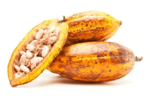 cocoa-butter-health-benefits-nulplus-getty