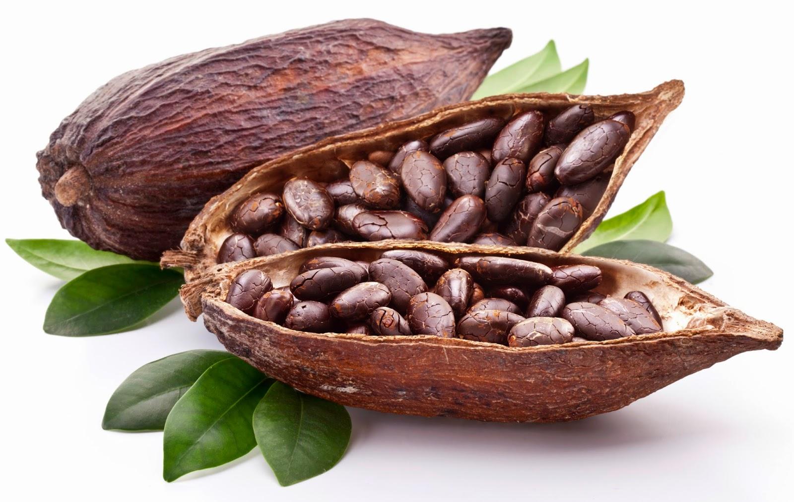 Stiati ca boabele de cacao…?