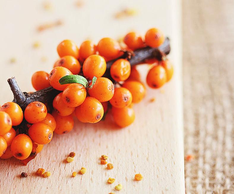 Stiai ca fructele de catina…?