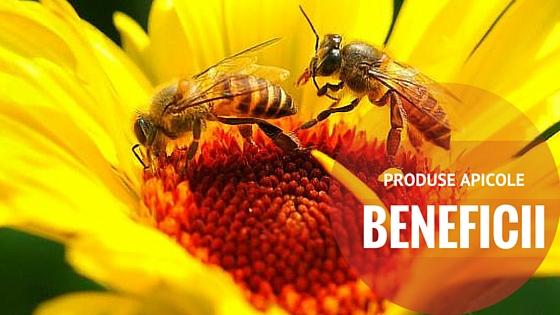 Produse apicole naturale sau minunatiile naturii