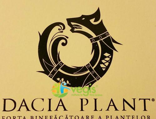 Rebranding Dacia Plant – In premiera pe Vegis.ro
