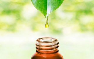 tea-tree-oil-1024x741
