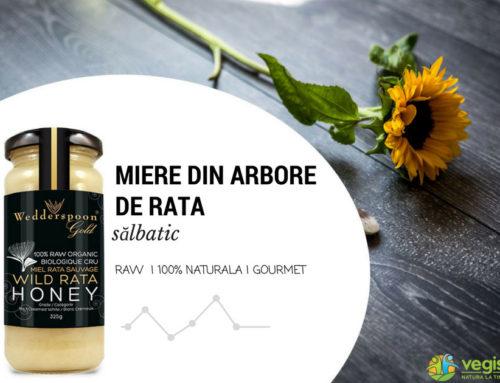 Miere din arbore de Rata salbatic, o delicatesă pe care trebuie să o încerci!