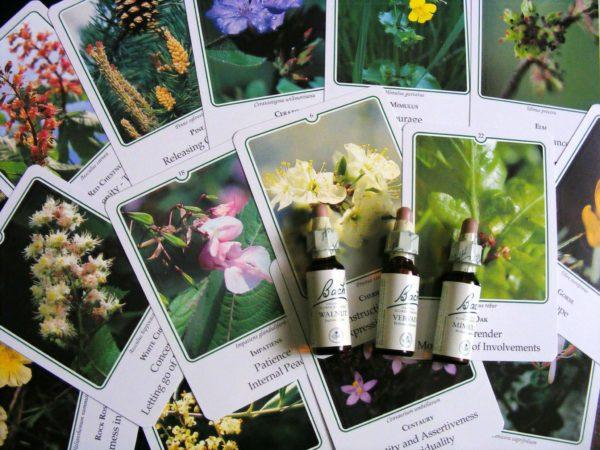 remedii florale Bach sarcina