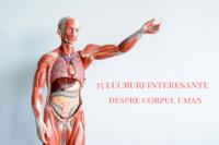 lucruri interesante despre corpul uman