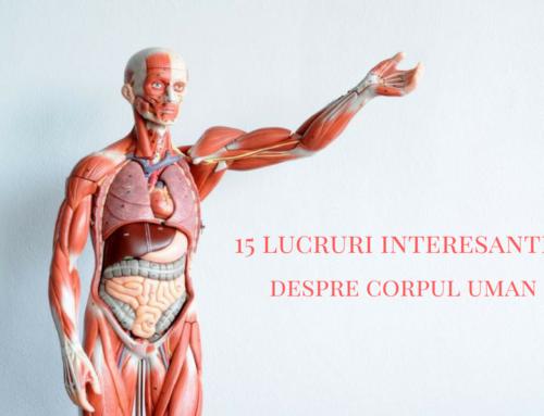 15 lucruri interesante despre corpul uman