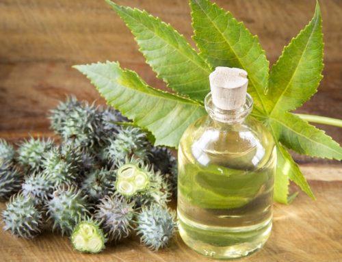 Uleiul de ricin și beneficiile sale pentru piele