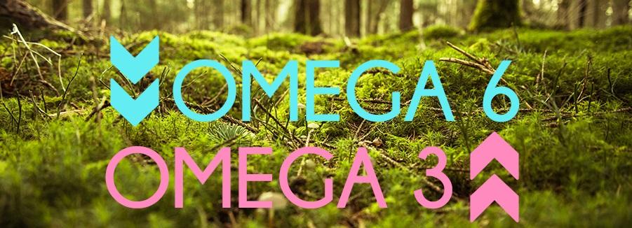 raport Omega 3 Omega 6