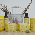 Apiterra, primul brand de cosmetice cu ingrediente apicole de la Albina Carpatină!