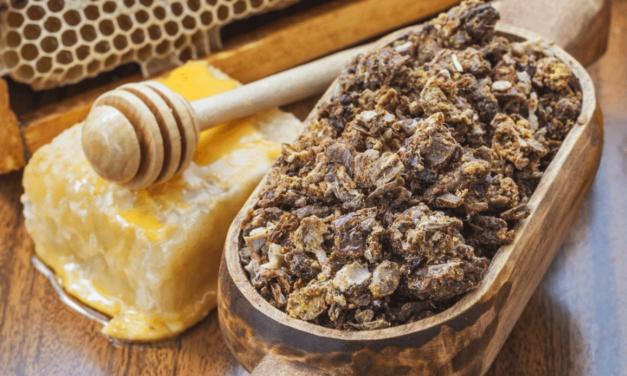 Propolisul, produsul apicol cu peste 300 de substanțe nutritive