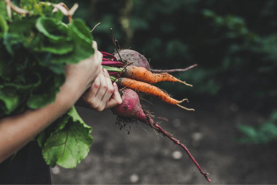 Mâncăm sau nu mai sănătos? Tendințe pe piața produselor ecologice din România