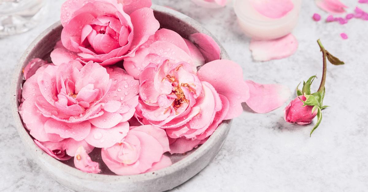 Apa trandafiri