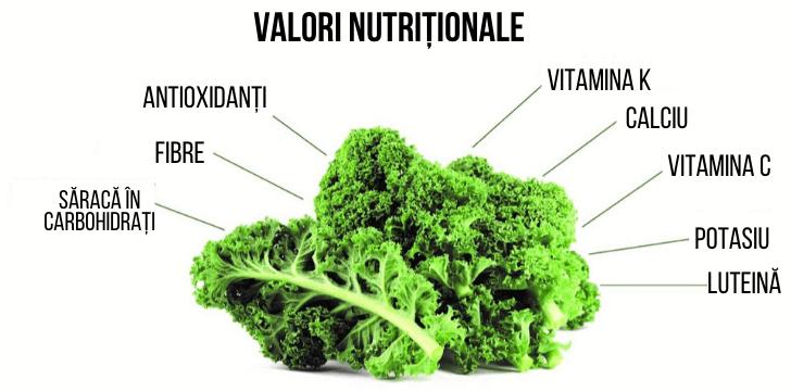 Valori nutritionale varza kale