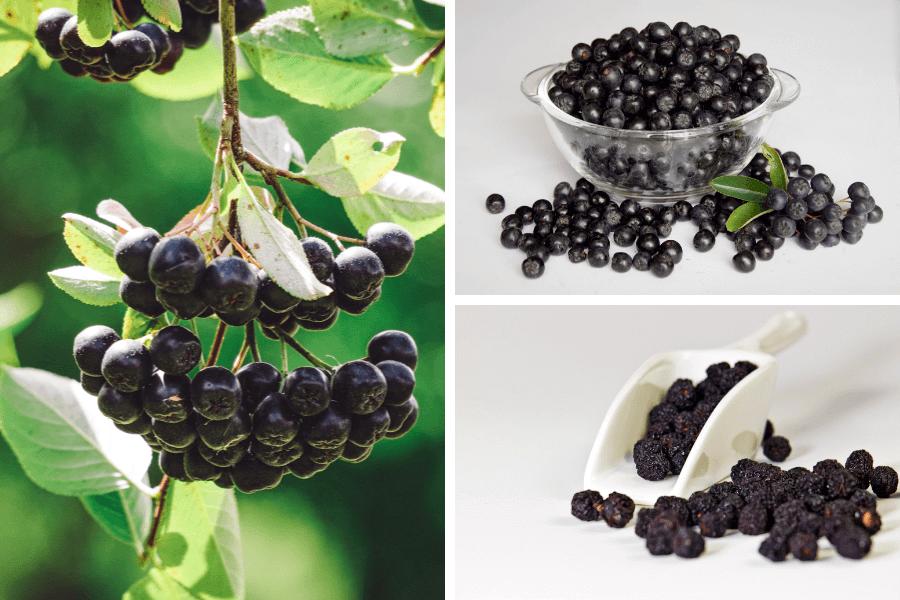 Antioxidanți fructe