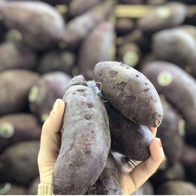 cartofi dulci mov