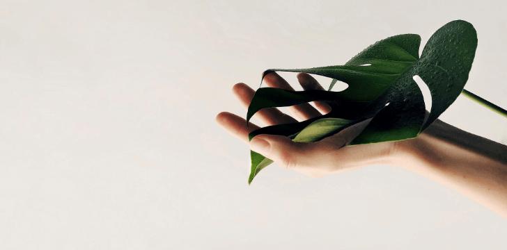 mâini catifelate